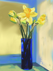 Yellow daffodils in a blue vase