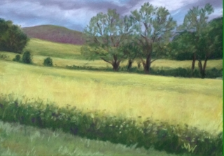 Pastel painting field yellow flowers trees