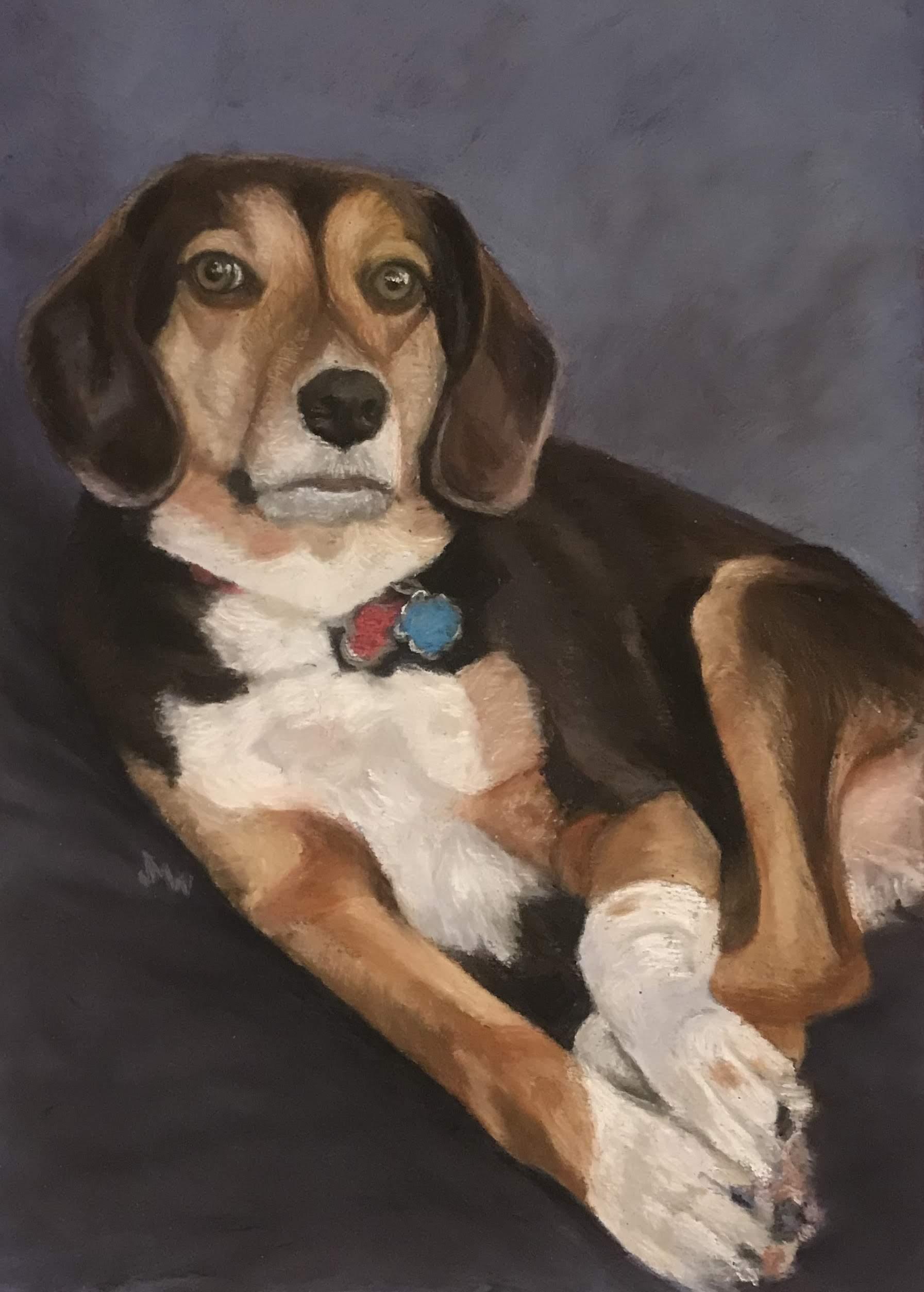 Pastel painting Beagle