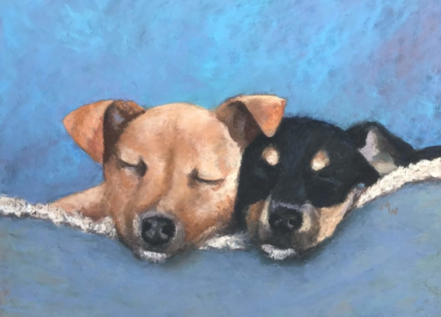 Pastel painting brown and black puppies