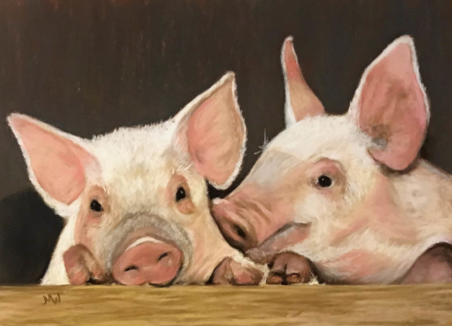 Pastel painting pink pigs