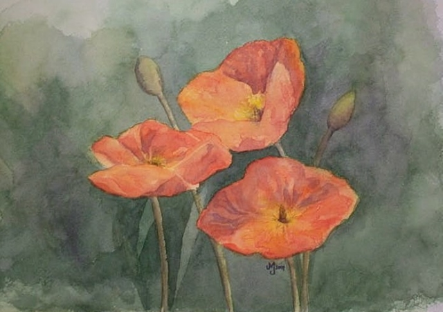 Watercolor painting orange poppies