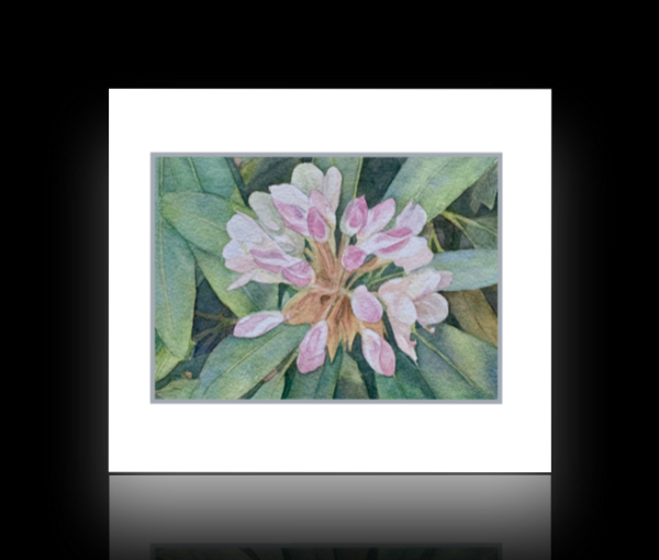 Rhododendron flower note card on black background