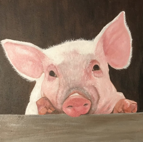 Acrylic painting of pink piglet looking over fence