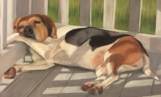 Pastel painting Beagle sleeping